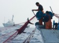 Mediterranean pirates busted by Greenpeace