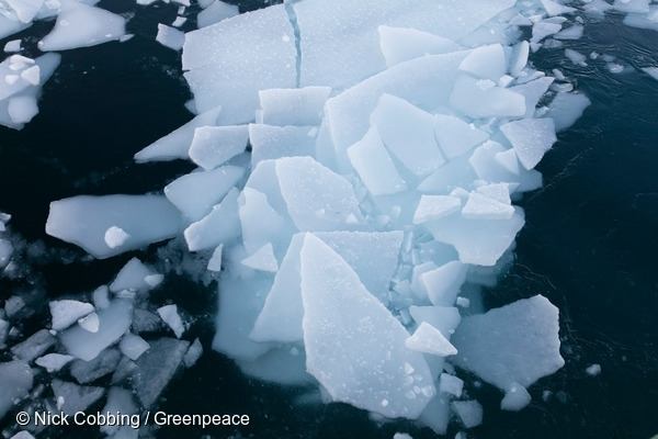 Ice in Arctic Ocean in Svalbard in 2016. 13/04/2016 © Nick Cobbing / Greenpeace