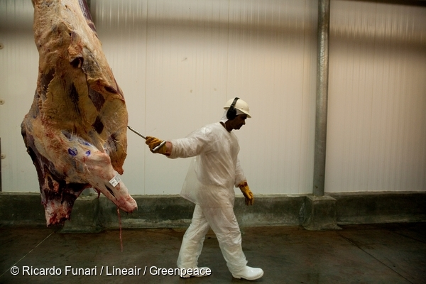 A worker handles butchered livestock in a slaughterhouse facility in Brazil. 1 Apr, 2009  © Ricardo Funari / Lineair / Greenpeace