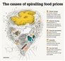 Climate change, spiraling food prices and what the world must do next