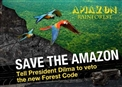 Save the Amazon, veto the new Forest Code