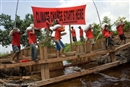 Company destroys plantations to protect forest