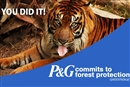 Consumer power! Procter & Gamble decides to wash its bad palm oil away
