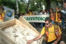Greenpeace protesta contra Monsanto