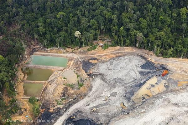 Coal Mine in Central Kalimantan, Indonesia