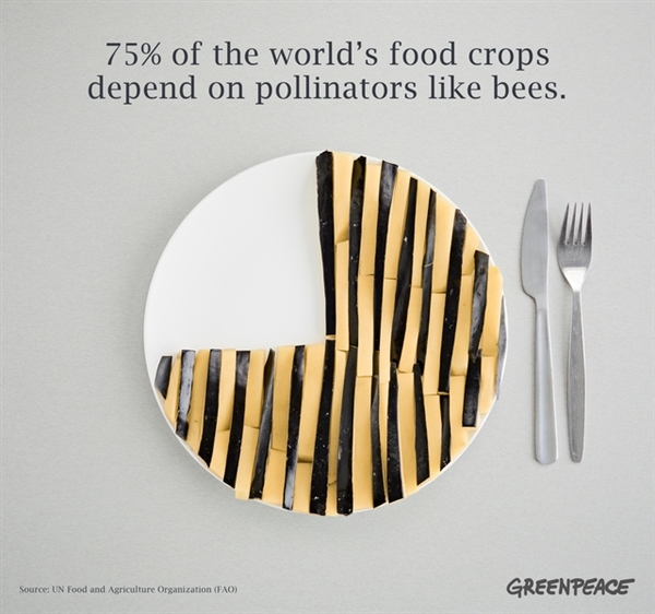 Three quarters of our food depend on bees and other pollinators - graphic