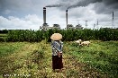 2018/12/06 Greenpeace: Japanese investment in coal in Indonesia carries rising financial and political risk to banks and investors