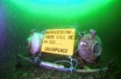 Greenpeace attaches banner to Cogema nuclear