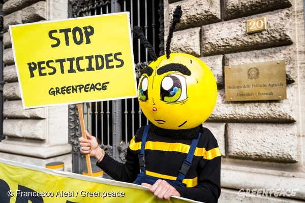 "Greenpeace activists dressed like working-bees on ""strike"", protest in front of the Agriculture Ministry, asking for a total ban of neonicotinoid pesticides."