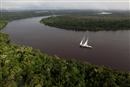 Save The Amazon: New Rainbow Warrior expedition starts today