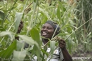 AGRA: helping African farmers, or helping agribusiness conquer African agriculture?