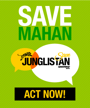 Save Mahan, Junglistan, Act Now