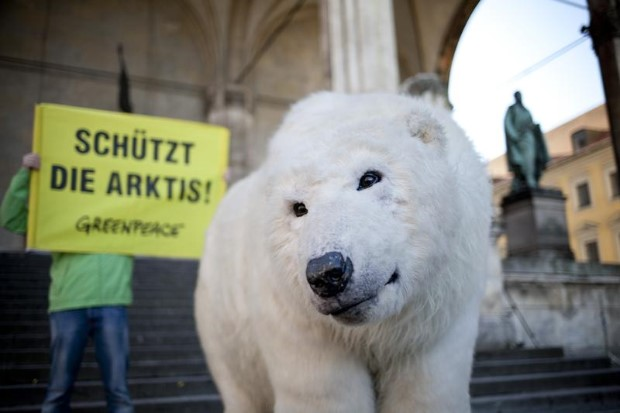 JAGs Arctic Action with Paula Bear in Munich