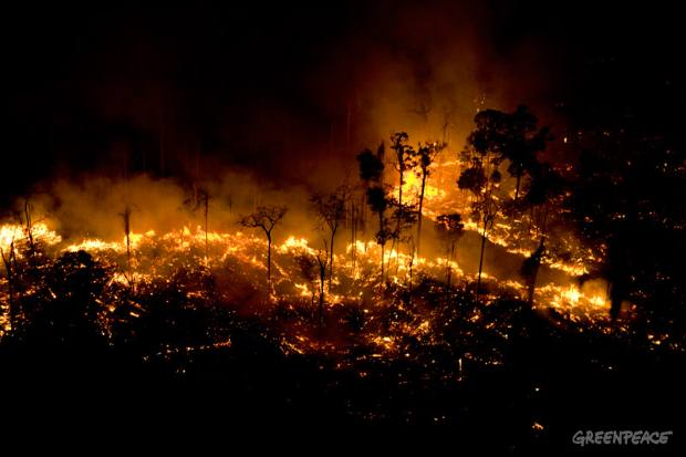 Man made fires to clear land for cattle or crops. Sao Felix Do Xingu Municipality, Para, Brazil.