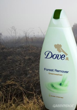 Stop Dove destroying forests for palm oil.
