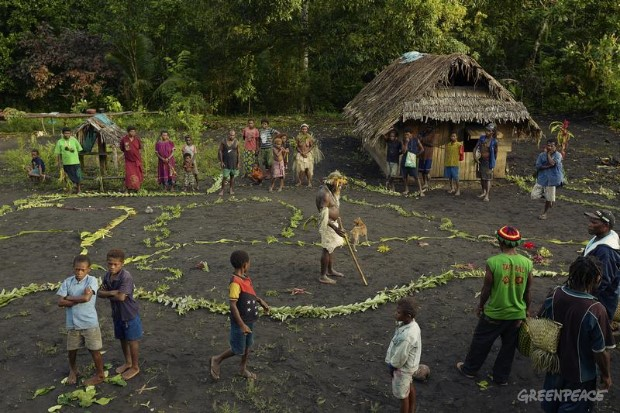 Forest Solutions - Community Forest Management in Papua New Guinea.