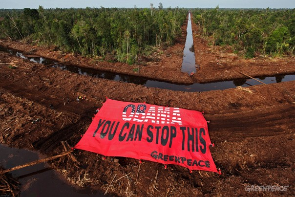 Climate Action against APRIL in Indonesia