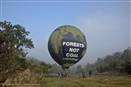 Greed for coal is threatening the forests of India