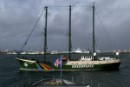 Greenpeace flagship Rainbow Warrior arriving