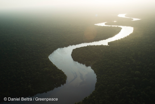 View of the Anajás River on Marajó Island, Para State. 13 May, 2006  © Daniel Beltrá / Greenpeace