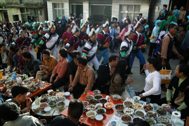 Hani's new year: rice harvest celebration in Honghe.