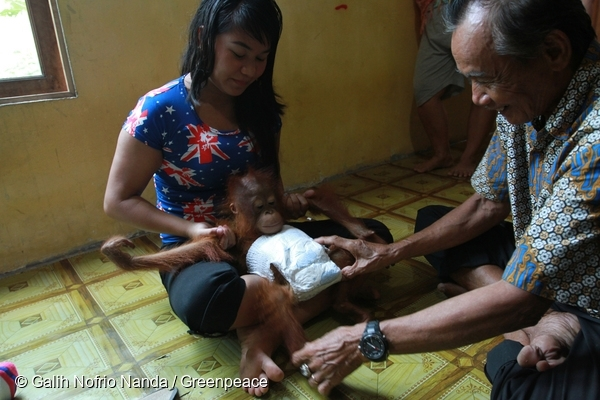 Ayu and her Father-in-law play with baby Otan. @ Galih Nofrio Nanda/Greenpeace