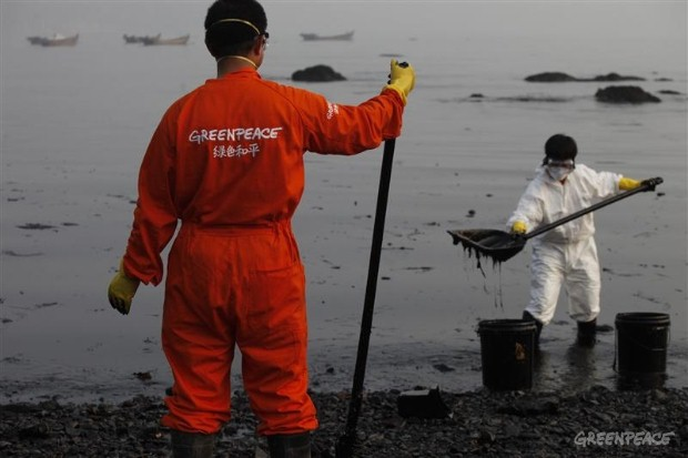 Greenpeace investigate the Dalian oil spill.