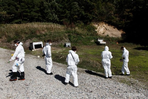 Radiation Testing, Fukushima