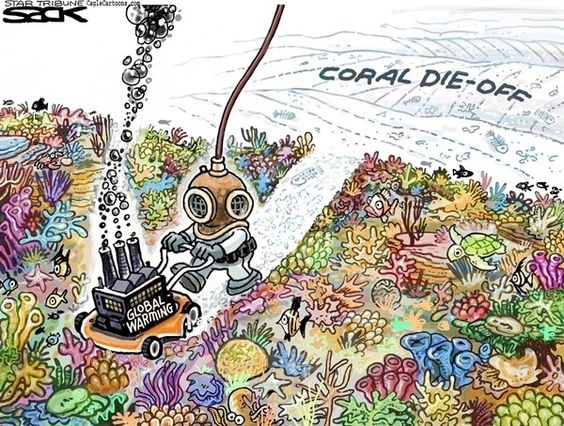 Damage to a reef system means irreparable damage