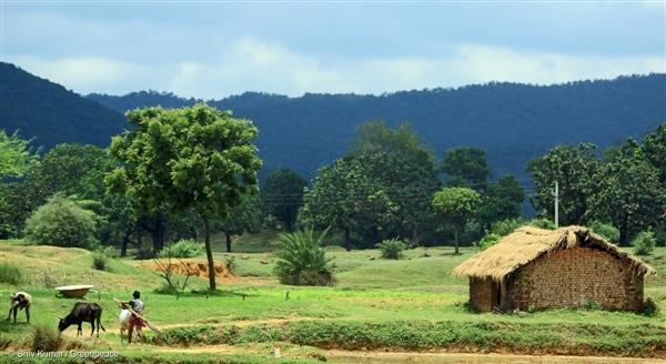 Landscape of Kedia village