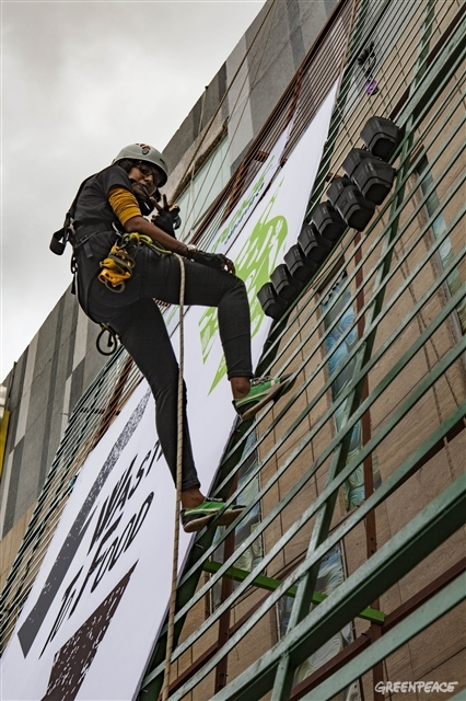 climbers climbing the vertical garden to place the pots