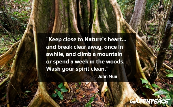 Quote on nature