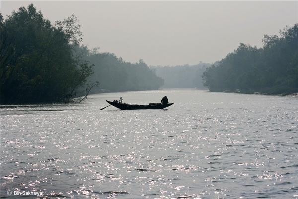 We depend on Sundarbans for our livelihood