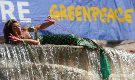Greenpeace Italy protest illegal driftnets in the Fontana di Trevi, Rome.