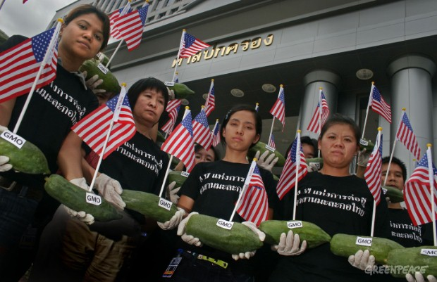 Greenpeace volunteers hold papayas and American flags in front of the administrative Court symbolising that the GE papaya patent is held by the US.