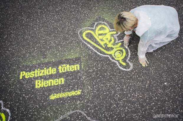 'Pesticides Kill Bees' Action in Hamburg